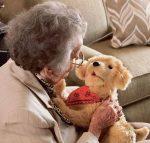 Les bienfaits des animaux robotisés pour les aînés